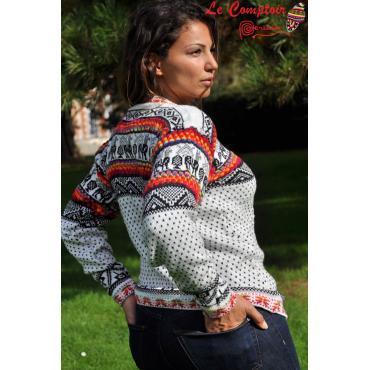 Pull péruvien ethnique